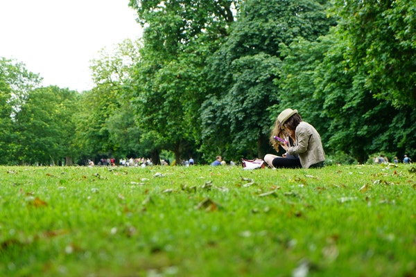 people-sitting-on-green-grass-field-1528361
